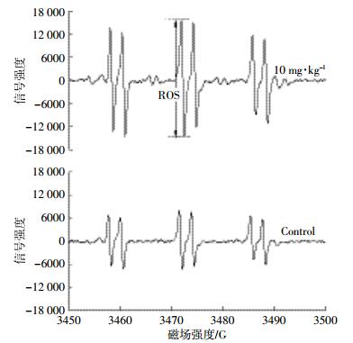 蚯蚓机电路原理图